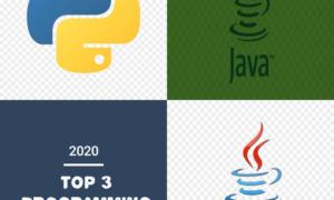 Top 3 programming languages