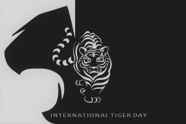 International Tiger Day : History, Quotes, and Messages